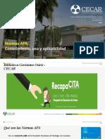 Instructivo Normas Apa. Actualizado. 11-02-2020 (1)