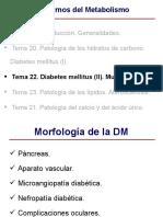 Tema+22 Diabetes+Mellitus+II Mucoviscidosis 2008 09