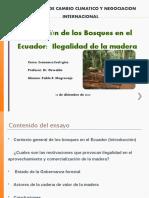 Gestion_Bosques.P_Mogrovejo