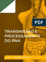 transmissao-e-processamento-do-rna