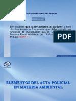 ACTAS POLICIALES Y DELITOS AMBIENTALES CASTILLO