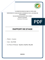 BTML Raport Du Stage (UHBC)