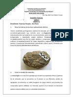 SOLUCIONARIO PARCIAL