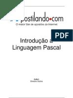 4242_outras linguagens programacao