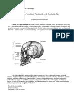 Anatomie_Functionala_viscerocraniul_Trifu_Dragos_AnI_1.4