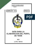 GUIA PERFIL DE TESIS ECEMN 2021