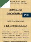 endomembranas