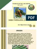EXPOSICION HABA FORRAJERA
