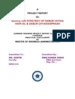 Dabur Marketing Strategy Of Dabur Vatika Hair Oil Dabur Ch Brand