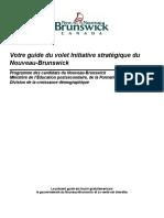 strategic_initiative_guide-f