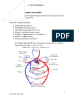 Sitema Circulatorio