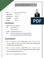 wael CV