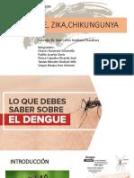 Seminario Infeccion Por Virus Final