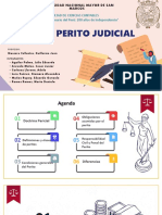 Grupo N° 1_Doctrina del Perito Judicial_Aula 410