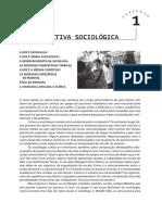 Fundamentos da Sociologia - Schaefer