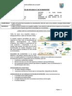 6-1° SEC-CÓMO AFECTA LA EXTINCIÓN DE UNA ESPECIE EN EL ECOSISTEMA-ORIGINAL. (1)