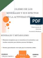 Los minerales. Importancia. Resumen