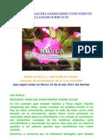 MAGNIFICENCIAS DEL SAKROGESIS COMUNMENTE LLAMADO EJERCICIO
