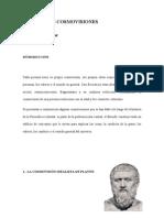 PRINCIPALES COSMOVISIONES.p