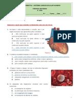 Proposta de correção da Ficha Formativa - Sistema cardiovascular
