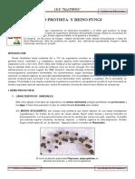 9. Reino Protista y Fungi