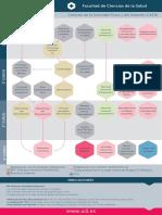 diagrama_asignaturas_cc_salud_cafd_es