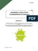 Dossier Animation e11-1