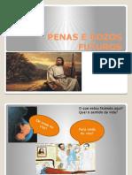 28º Simpósio Vera Cecília 30-04-2014 Penas Gozos