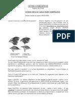 0ocho_cerditos_resumen