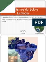 ecologia-150514184402-lva1-app6891