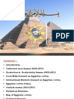 1.Country Report, Egypt