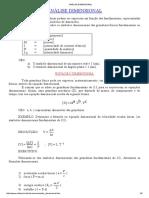 Analise Dimensional 1