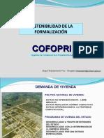 8.-Sostenibilidad de La Formalización