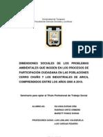 Dimensiones sociales de los problemas ambientales que inciden en los procesos de Participación Ciudadana en las poblaciones Cerro Chuño y Los Industriales de Arica, comprendidos entre los años 2000 a 2010.