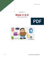 mod3_style_css
