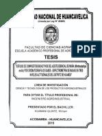TESIS DE MUÑA UNH 2015