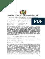 Sentencia constitucional 0176-2021 s3
