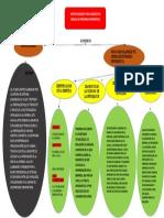 Conceptos Basicos Para Elabora Un Manual Red y Seguridad