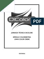 Apostila de Coloração Tecnicas de Plínio Sérgio Cabeleireiro