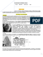Bim. i Apostila Vii - Reino Fungi e Líquens- 3º Ano