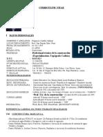C.V. FULGENCIO CASTILLO SALAZAR