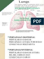 Fisiologi Sistem Pernafasan ASFAAL-OKI 2011