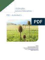 Desarrollo sostenible - PEC1