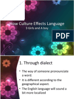 How Culture Effects Language
