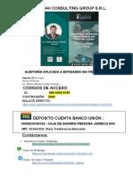 AUDITORIA APLICADA A ENTIDADES SIN FINES DE LUCRO