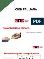 s17.s1 Accion Pauliana