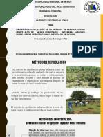 impotancia de métodos de repoblación forestal