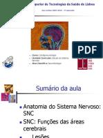 Anatomia Do Sistema Nervoso Central_parte 2
