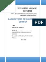 REPORTE N° 5 - CALDERAS