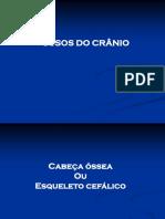 Cabeça Óssea Geral- ANATOMIA